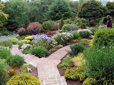 Sine_Front_Garden