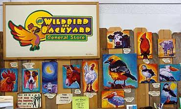 Tod_Steele_Wild-Bird