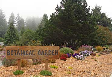 Botanical_Sign