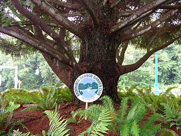 Botanical_GardenClubSign