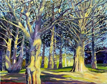 Pauline-Holmes--Cypres-in-the-sun Acrylic