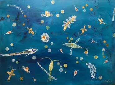 A-Gathering-of-Plankton -Sarita-Southgate
