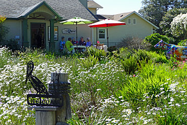 Manley-Art-Center-2