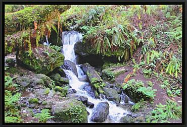 I-DA-3rd-Springtime-Falls-Benita-Robinson