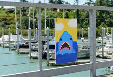 Youth---Shark